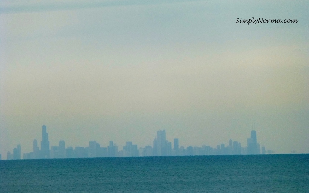 Chicago Skyline from Indiana Sand Dunes